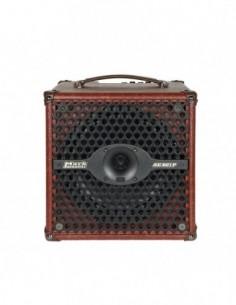 DV Mark Acoustic AC801P