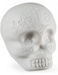 LP Skull Shaker (White)